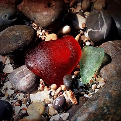 Warm hearted, cold hearted #stone #stones #piedra #piedras #glass #orilla #shore #beach #playa #beach #sand #summer #water #instabeach #seaside #beachlife #color #colors #red #green #colorful #colour #instacolor #colorgram (IMARCHI) Tags: warm hearted cold stone stones piedra piedras glass orilla shore beach playa sand summer water instabeach seaside beachlife color colors red green colorful colour instacolor colorgram imarchi imarchicom photographer fotografo madrid spain photography photo foto iphone phoneography iphoneography mobile eyeem instagram