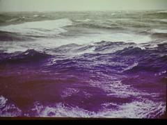 The Cruel Sea (Smabs Sputzer) Tags: cruel sea film sick exhibit