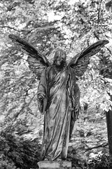 The ravages of time (michael_hamburg69) Tags: hamburg germany deutschland cemetery ohlsdorf ohlsdorferfriedhof friedhof gottesacker sculpture skulptur ange engel angel female grabmalkremerquinckhardt familiengrab kremer quinckhardt