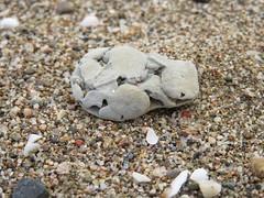 Caillou (Arcalune) Tags: caillou stone espagne spain
