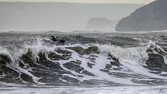 Fluid chaos (Anthony Goodall) Tags: sea surf surfing man water nature waves scarboroughuk