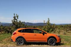 Crosstrek in Front of Mt Adams (M.Chopra) Tags: columbiarivergorge colors mthood mtadams crosstrek xvcrosstrek xv subaruxvcrosstrek subaru scoobaru scooby portland portlandia portlandor oregon or orange