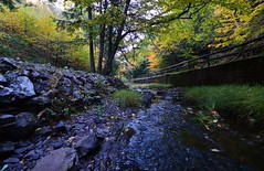 Lepper Brook In The Fall (TheNovaScotian1991) Tags: fallcolors fallenleaves autumncolors autumn autumnfoliage faultline novascotia canada colchestercounty victoriapark truro nikond3200 tokina1116mmdxii ultrawideangle tokina lepperbrook rushingwater fence railing rocks stacked silt pebbles trees ca rockwall