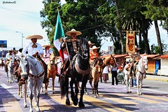 16 de septiembre (guilletho) Tags: mexico charros caballos traditions desfile parade tradiciones horse ride canon