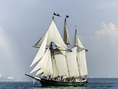 Tall ships 2016 Denis Sullivan pic1 (Artemortifica) Tags: boats chicago navypeir tallships band clouds fountains garden lakemichigan sailors sails skyline summer illinois