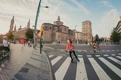 2016-09-25 08.30.53 (Atrapa tu foto) Tags: 8mm espaa europa europe maratondezaragoza saragossa spain xmaratnciudaddezaragoza zaragoza ateltismo atletics carrera corredores deporte fisheye marathon maraton maratn ojodepez runners running sport aragon es