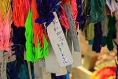 image (Rubia.A) Tags: 大久野島 広島 origami okunoisland rabbitisland japan hiroshima 千羽鶴