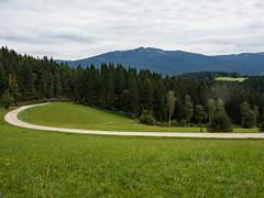 View of Grosser Osser (schauplatz) Tags: bayerischerwald bayerwald deutschland lamerwinkel urlaub forest wald landscape landschaft aussicht view road weg groserosser scenery