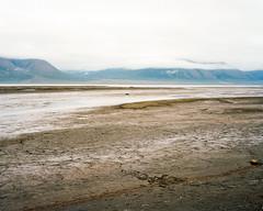 Arctic Landscape in Svalbard (danielfoster437) Tags: arcticlandscape ektar100 landsape landscapephoto mamiya7 mediumformat svalbard