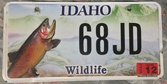 IDAHO 2012 ---WILDLIFE TROUT PLATE, OPTIONAL (woody1778a) Tags: usa american licenseplate numberplate registrationplate mycollection myhobby state unitedstates idaho wildlife 2012 optional