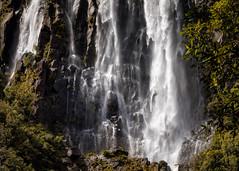 Wairere Falls (andiwolfe) Tags: newzealand northisland wairerefalls rainforest waterfall