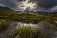Ecosse Ile de Skye - Explored (EtienneR68) Tags: d810 montagne arbre eau ecosse landscape mountain nature nikon paysage scotland scottish water