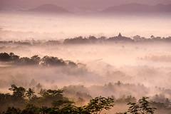 Landscape in the Mist-DSC_7293 (thomschphotography3) Tags: sunrise mist fog mountains indonesia java borobudur hills landscape asia southeastasia nature temple buddhist buddhism