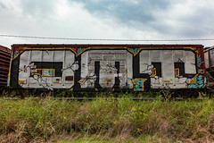 (o texano) Tags: houston texas graffiti trains freights bench benching wholecar omt