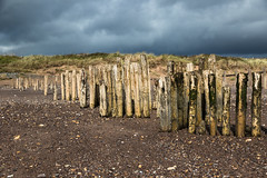 Decaying groyne, Dawlish Warren (RichardTowers43) Tags: beach dawlishwarren groyne decay sanddunes devon