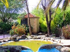 Alcal del Valle (Cdiz) (sebastinaguilar) Tags: 2013 cdiz andaluca espaa flora fauna
