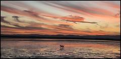 Sunset Cloud over Hayes Inlet Clontarf-3= (Sheba_Also Millon + Views) Tags: sunset cloud over hayes inlet clontarf