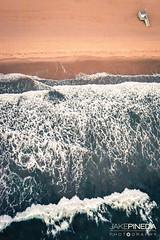 Ocean Views (JAKE PINEDA) Tags: anthelion helicopters california beach ocean santa monica coastline nikon d810 nikkor 1424 f3545 pacific palisades malibu