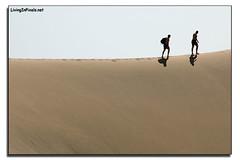 Dunas (Living In Pixels) Tags: grancanaria sand desert dune playa canarias arena desierto dunas maspalomas canaryisland