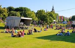 Linzfest 2013 -Tag 1 (austrianpsycho) Tags: people linz leute stage wiese menschen rasen donaupark 2013 linzfest bühne donaulände 18052013 linzfest2013