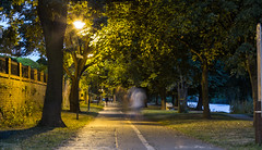 Ghostly York River Walk (kevaruka) Tags: yorkshire york twilight evening summer 2016 july river ouse 68017 68003 drs directrailservices greatbritain green flickr frontpage thephotographyblog ilobsterit canon canoneos5dmk3 canon5dmk3 canon70200f28ismk2 canonef1635f28mk2 5d3 5diii 5d 5dmk3 england uwa ultrawideangle telephoto trees watre water