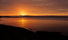 Lough Sunset. (Photographer Dave C) Tags: sky stunning sun sea sunset summer seascape canonofficial canon40d mygearandme mymindseye landscape light bangor beauty photography photographerdave passion photograph 2016