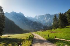 Morning in the mountains (Dejan Hudoletnjak) Tags: landscape sunrise mountains valley morning summer summermorning summersunrise nature land earth slovenia slovenija jezersko alps europe