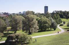 Carleton University (le calmar) Tags: ottawa nationalcapitalregion nationalcapital capital canada ontario 2015 summer t city ville capitale canon 50d canon50d reflex slr carleton university universit park parc