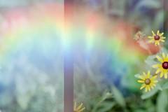FH000018 (Cara J Salvaggio) Tags: olympusom1 superia200 multiexposure film 35mm filmphotography holographic