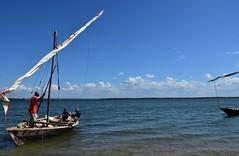 Sailing on a wooden dhow to Kiwla Kisiwani from Kilwa Masoko (7) (Prof. Mortel) Tags: tanzania dhow kilwamasoko kilwakisiwani