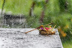 Offering on a rainy day (Bart Weerdenburg) Tags: bali indonesia indonesie sidemen asia offering hindu hindoe hinduism offer rain rainy rainyday weather ceremnoy ceremonie ritual