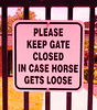 Pink Sign (Sonia Argenio Photography) Tags: bysoniaa flickr flickrsoniaargenio flickrsoniasgallery flickrsoniaa flickrsoniagallery obs ocalabreederssale ocalafl outdoors soniaargenio florida gate gated grass guarded horse horsecountry horsesale horses outbuildings posted