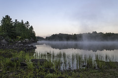 River Land (Jackx001) Tags: 2016 camptrip camping canada family fishing labourday nature ontario pickerelriver september weekend wild canoe mis sunrise jacknobre