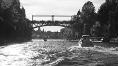 DSC01807 (cameronalvarado) Tags: university stadium lake lakeunion boating union seattle washington uw bridge bridges