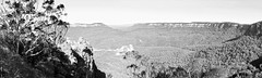 Blue Mountains - Jamison Valley (lukedrich_photography) Tags: australia oz commonwealth        newsouthwales nsw overlook viewpoint skyline valley plateau threesisters blue mountains region jamisonvalley scenic nature katoomba pano panorama rock forest cloud canon t6i canont6i history culture