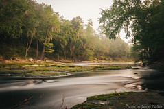 Little Shoals (corran105) Tags: littleshoals suwannee shoals rapids river water longexposure nd100 10stop morning cloudy overcast misty foggy moody dramatic vsco vscofilm color retro vintage landscape florida northflorida floridatrail columbiacounty whitesprings outdoor