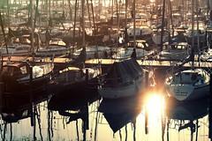 (brain3ater) Tags: harbour boats sunlight morning sun volendam holland netherlands