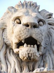 Budapest lion Chain bridge