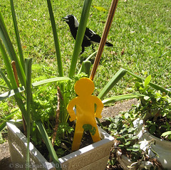 Yellow standing running man and magpie (1 of 2) (Su_G) Tags: sug 2016 standingrunningman yellow yellowstandingrunningman magpie garden 3dprinting 3d bird australianbird maker makerlink