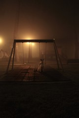 Fog and the dog (FlaviaDan) Tags: fog dog cloud photo photography picture pixel photographers park porn art animal ancient city urban like follow canon cane personal lovely october autumn