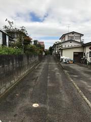 GREEN_NAGAO_057 (yabuki-keikanWS) Tags: