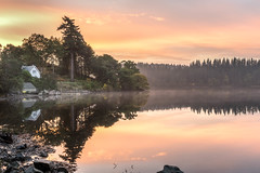 Loch Ard (JSP92) Tags: aberfoyle scotland unitedkingdom gb morning sunrise dawn light reflections mist trees cottage water loch lake ard gold golden orange soft symmetry