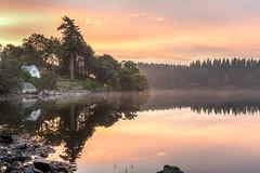 Loch Ard (JSP92) Tags: aberfoyle scotland unitedkingdom gb morning sunrise dawn light reflections mist trees cottage water loch lake ard gold golden orange soft symmetry