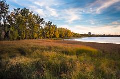 the observer (janet.capling) Tags: britannia beach ottawa grass photographer water sun sky clouds wind