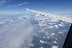 interesting cloud structure on flight Toulouse - Brussels in September 2016 (roli_b) Tags: interesting cloud structure wolken form sicht aerial view vista vue cielo himmel sky wings flgel september 2016 brussels airlines toulouse flight avion air plane windows seat blick a319 oossh airbus flugzeug wolkenstruktur wheather weather wetter tiempo