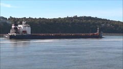 Algoma Guardian (Jacques Trempe 2,440K hits - Merci-Thanks) Tags: quebec canada stefoy ship navire fleuve river stlaurent stlawrence vraquier bulker algoma guardian