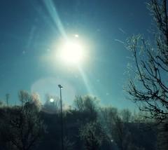 berg (me, paolo and the seven wonders + two) Tags: sole cielo alberi inverno freddo viaggio germania picmonkey