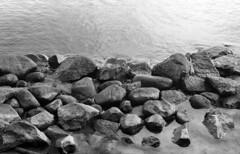 Some rocks in the lake (Nils Kristofer Gustafsson) Tags: blackandwhite bnw ishootfilm retro rollei 400s lomo lomography sweden rebro keepfilmalive filmisnotdead filmphotography film rodina adonal