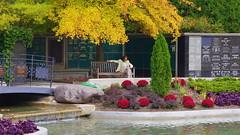 074crpsatrecrpshsat (citatus) Tags: woman reading mount pleasant cemetery toronto canada fall afternoon 2016 pentax k3 ii