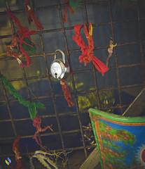 wish (vibrancefotografy) Tags: architecture art baby beach berlin birthday blue bw california canada canon car cat chicago city concert dog europe family festival flower food france friends fun garden graffiti green holiday india landscape light macro me museum music nature new newyork night nikon paris park party people portrait red sea show sky snow spain spring stlouis street summer sunset texas travel tree trees trip uk usa vacation vibrance photography washington water wedding winter zoo